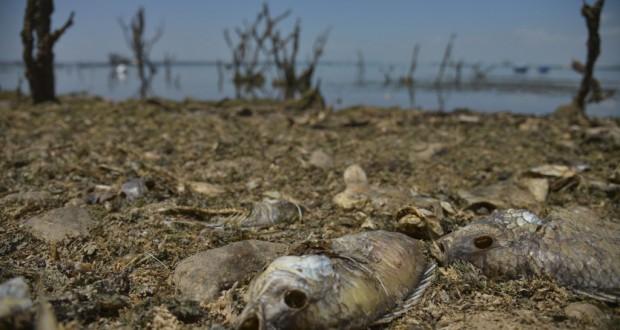 過去40年で最低水位に落ち込んだ北東伯バイーア州のソブラジーニョダム(Marcello Casal Jr./Agencia Brasil)