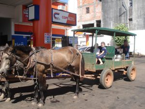 パラグァイ、サンイグナシオのメノナイトの馬車(By Patty P (Own work) [Public domain], via Wikimedia Commons)