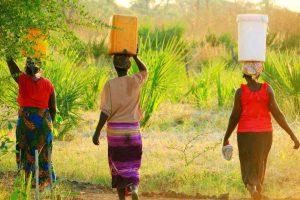 バケツや壺を頭頂に載せて姿勢よく歩くアフリカの女性たち