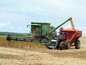巨大な機械で収穫していく