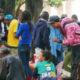 サンパウロ市=クラコランジアが拡散?=一掃作戦後、複数の群れなす