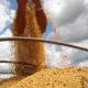 発展するパラグァイ大豆生産=躍進する種子の国産化=在アスンシオン 坂本邦雄