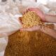 韓国CJ第一製糖、ブラジルの大豆加工企業を買収=「世界規模の食品会社になる」と意気込む