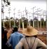 Youtubeで公開されている農場の変電設備を破壊する様子の動画(Reprodução)