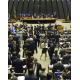 《ブラジル》汚職議員落選運動「さよなら、愛しい人」キャンペーン始まる=593人の議員をランク付け=議会での投票傾向も白日の下に晒される