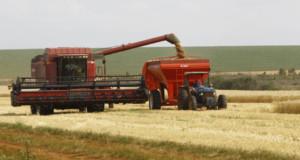 広大な国土を持つブラジルは、農業が主要産業だ(参考画像・Orlando Kissner/ANPr)