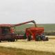 ブラジル地理統計院=今年の農業生産予想を上方修正=それでも昨年比では6.8%減
