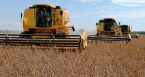 好調な農業生産が、周辺都市の不動産開発も促進している(参考画像・Kleiber Arantes/Secom)