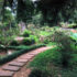 整備が進む日本庭園の様子