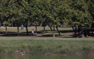 サンパウロ市民の憩いの場、イビラプエラ公園(Paulo Pinto/Fotos Publicas)