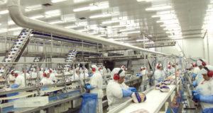 ブラジル南部パラナ州の鶏肉工場(ANPr/SINDIAVIPAR)