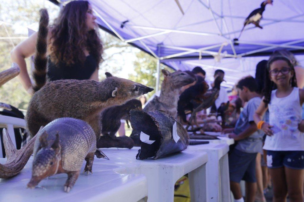 動物の展示コーナーと訪れる人々(Fernando Frazão/Agência Brasil)