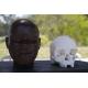 リオ市=「国立博物館は生きている!」=調査員らフェスティバル開催=3Dでルジアの頭蓋骨も複製