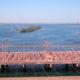 県連故郷巡り=アララクアラ、ノロエステ巡訪=(8)=水力発電所から生まれた町=大河に浮かぶ陸の孤島