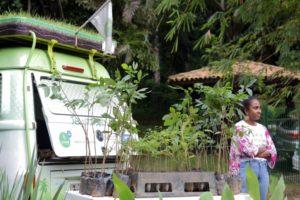 サルバドール市で行われた、市民への苗木の配布(参考画像・Bruno Concha/Secom)