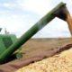 《ブラジル》2019年穀物収量=今年より若干減の2億2670万トンの予測