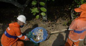 死んだ魚を引き上げる職員(Tania Rego/Ag. Brasil)