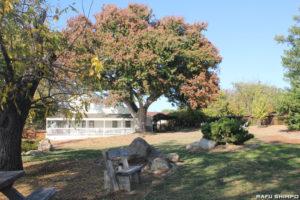 若松コロニーの跡地は1969年にカリフォルニア州の歴史史跡に指定され、敷地の隣にあるゴールド・トレイル小学校にそのモニュメントがある(写真=吉田純子)