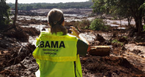 現地を視察した国立再生可能天然資源・環境院(IBAMA)のスタッフ(IBAMA)