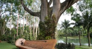 ベンチに加工された丸太。広い敷地内には世界中の芸術家の手による作品が展示されている。(Bernadete Amado)
