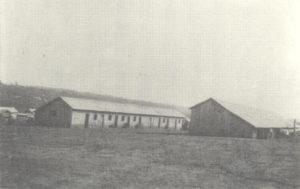 移民収容所(1929年)