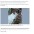 刑務所内の病院に入院中のPQD(22日付G1サイトの記事の一部)