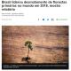 《ブラジル》環境省=気候変動対策費を96%凍結=ドイツとの共同事業も停止か