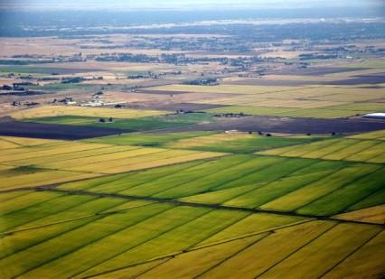 「農業は農業企業成り」を示す大規模な農地(本人提供)