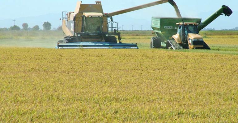 カリフォルニア州米作農家(村松さん提供)