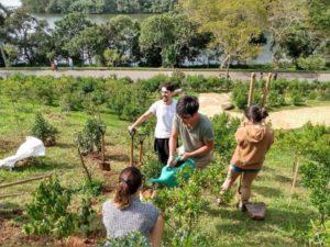 グァラピランガ(サンパウロ市)にマナカの苗木を植える第24回環境法会議の参加者たち