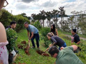 聖地の造園プロジェクトには、マナカのようなマタアトランチカ(大西洋岸森林)の在来種で散歩道を作る計画がある。