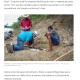 《ブラジル》前史時代の爬虫類の化石=11歳の少年が見つける