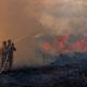 アマゾン火災余波=ブラジル産皮革原料に不買通達=周辺諸国が6日に首脳会議