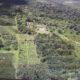 アマゾン90年目の肖像=「緑の地獄」を「故郷」に=(14)=起死回生の森林農法