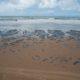 《ブラジル北東部》史上最大の海洋環境破壊に=漂着したのはベ国産原油=流出原因は未だ分からず