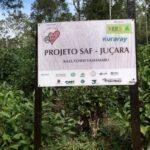 ジュサラ椰子プロジェクトの看板