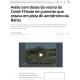 《ブラジル》ワクチン運搬中の小型飛行機とロバが接触