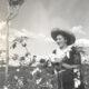 特別寄稿=白い黄金を求めて=ブラジル綿花の歴史と日本人綿作者=櫻井章生(さくらいあきふ)=《4》