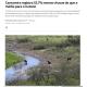 《サンパウロ州》カンタレイラ水系の雨は半分以下=水道公社は供給停止を否定
