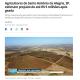 《ブラジル》3度目の南極下ろし直撃!=各種農産物への被害は甚大=価格上昇、回復に1年以上か