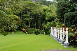 寺院の中にも様々な仏像があり、見ごたえがある。(禅光寺写真)